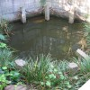 葛飾湧水群「葛羅の井」 – 千葉県船橋市西船